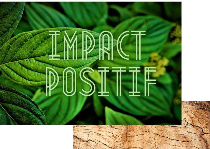 Boisdellys impact positif