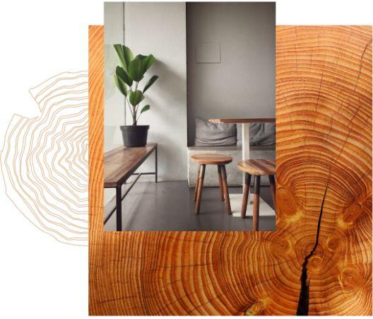 Le bois, un matériau noble et écologique